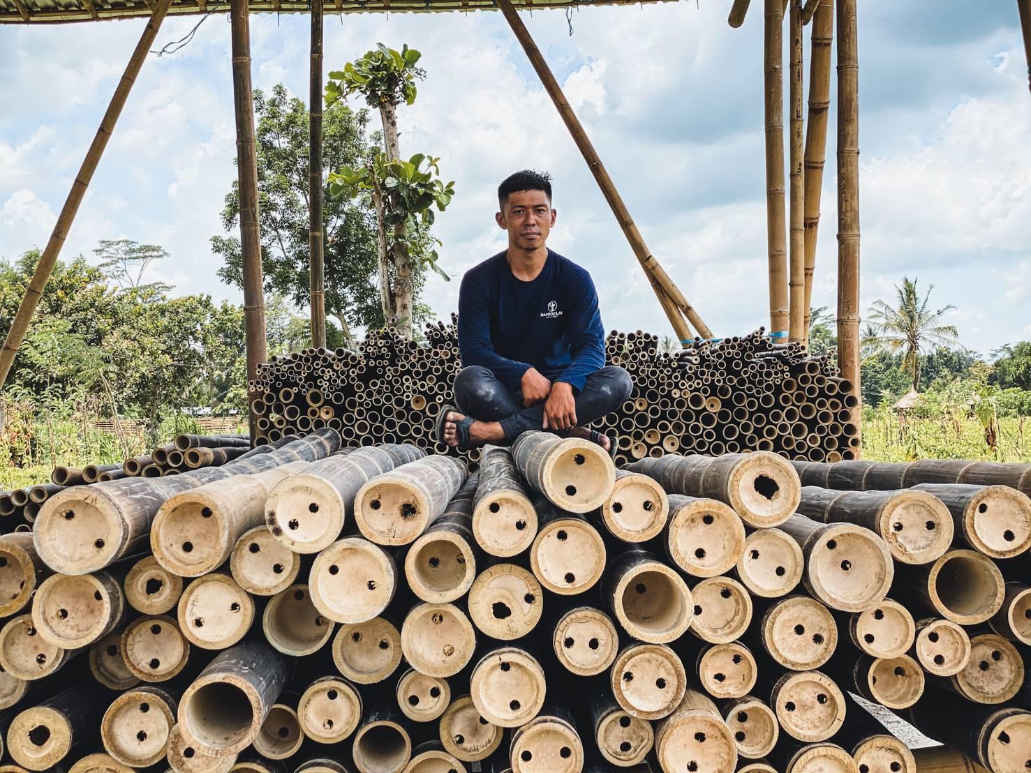 bamboo architecture design